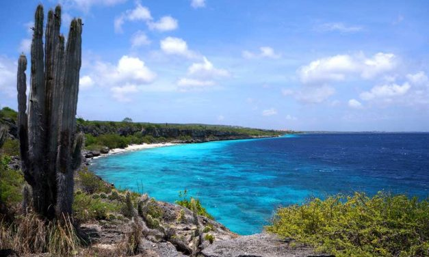 Goedkope Bonaire last minute deal | december 2016 €499,- p.p.