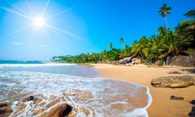 Super goedkope vakantie Sri Lanka   9 dagen vanaf €499,- p.p.