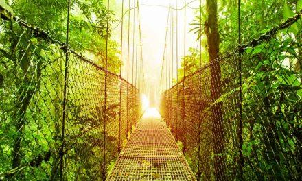 Rondreis Costa Rica 17 dagen | Highlights luxe reis €1799,- p.p.