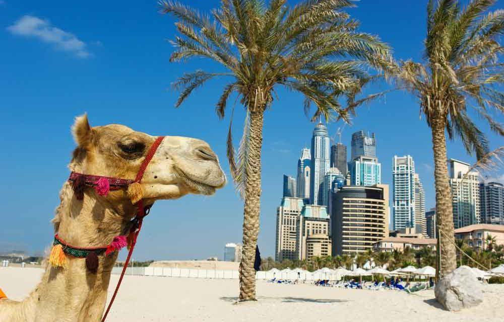 Let's discover Dubai | 5-daagse 4* getaway voor €577,- per persoon