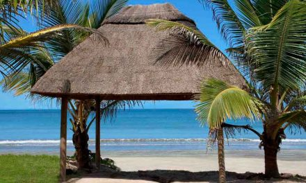 From Gambia with love | 9 dagen november 2017 €384,- per persoon