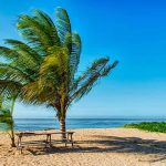 Goedkope vliegtickets Suriname Paramaribo | met KLM vanaf €636,- p.p.