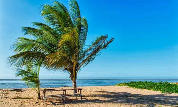 Last minute vakantie naar Suriname | complete vakantie incl. ontbijt