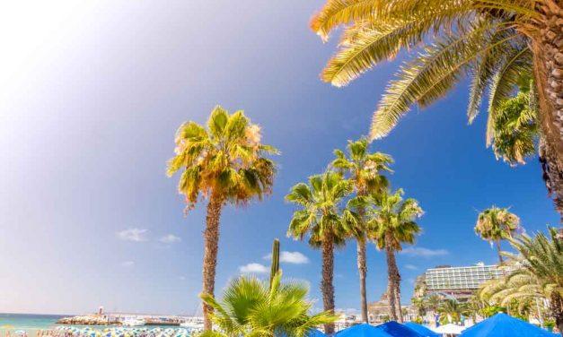 Zomervakantie Gran Canaria deal | augustus 2017 €399,- p.p.