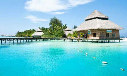 Droomreis alert! 17-daagse rondreis Malediven & Sri Lanka