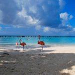 Volpension cruise Bahama's + Bermuda | november 2017 €336,- p.p.