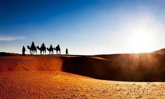 Ontdek magisch Marokko in de herfst | 8 dagen €291,- p.p.