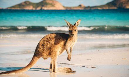 Retour vliegtickets Australie   maart 2018 vanaf €897,- per persoon