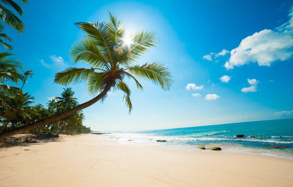 Droomvakantie naar Sri Lanka | 9 dagen incl. ontbijt & diner €728,-