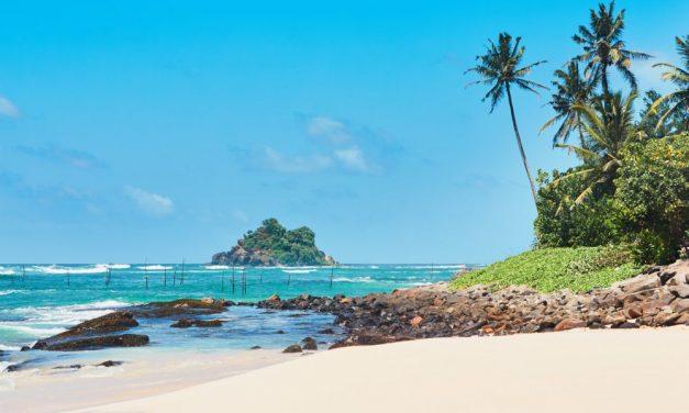 12-daagse deal Sri Lanka | last minute €700,- per persoon incl. veel