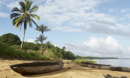 Ontdek Suriname | 9 dagen februari 2018 €787,- per persoon