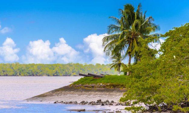 Vakantie Suriname in november | incl. dagelijks ontbijt voor €880,- p.p.