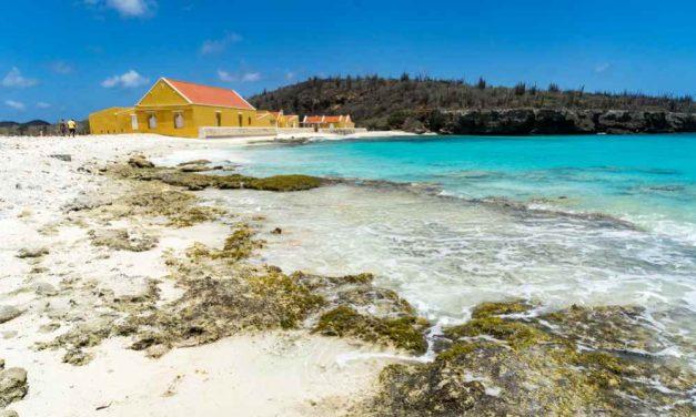Alle luxe op Bonaire   9 dagen in mei nu voor €700,- per persoon