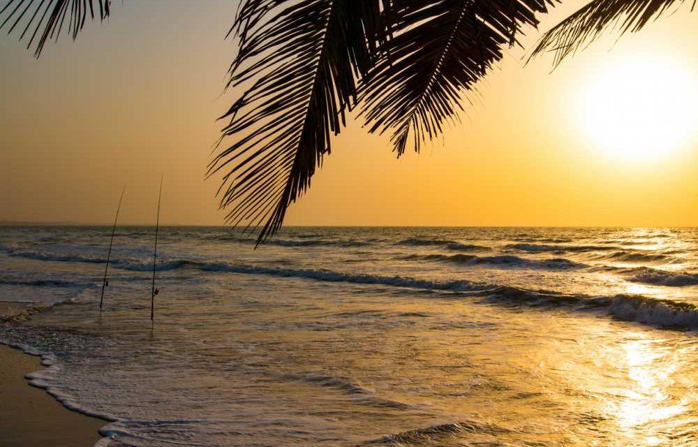 Budget vakantie @ Gambia | 8 dagen inclusief ontbijt €572,-