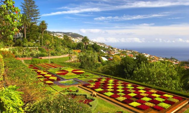 Ontdek bloemeneiland Madeira | incl. ontbijt & diner nu €843,- p.p.