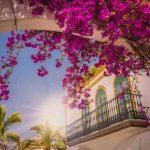 Zonnig Gran Canaria   Nu 8 dagen in juni slechts €377,- per persoon