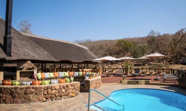 Wow safari Zuid-Afrika | Verblijf in 5* lodge incl. volpension €1179,-