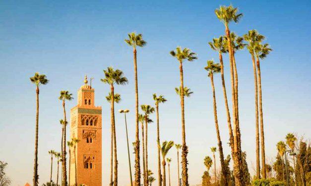 Ontdek authentiek Marrakech | 8 dagen in mei nu maar €166,- p.p.