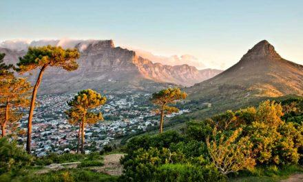 Rondreis Zuid-Afrika voor wijnliefhebbers | 10 dagen €1259,- p.p.