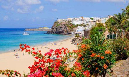 8 dagen Fuerteventura in juni €266,-   Vluchten, transfers & verblijf