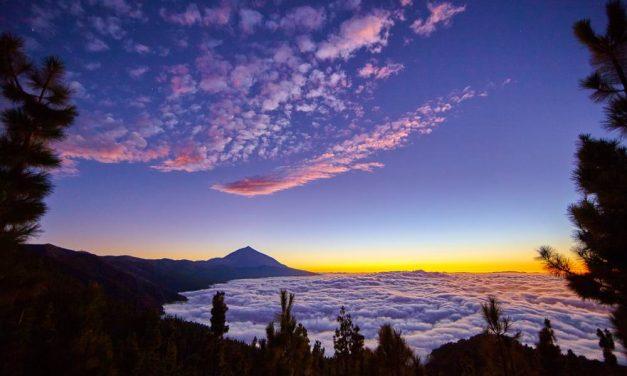 Zonnig Tenerife in de zomervakantie voor €351,- per persoon