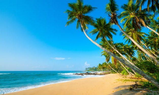 4**** droomdeal @ Sri Lanka | 9 dagen genieten van halfpension