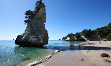 22-daagse camperreis Nieuw-Zeeland | incl. vluchten €1212,- p.p.