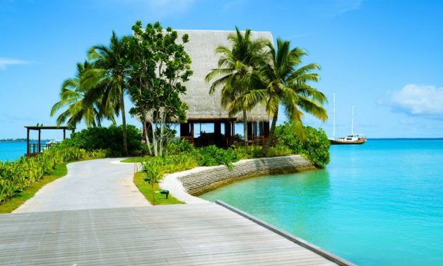 Droomreis: Cruise Only Bahama's & meer | volpension €449,- p.p.