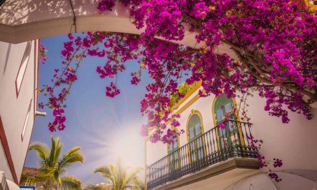 8 dagen op zonovergoten Gran Canaria | juli 2018 €305,- p.p.