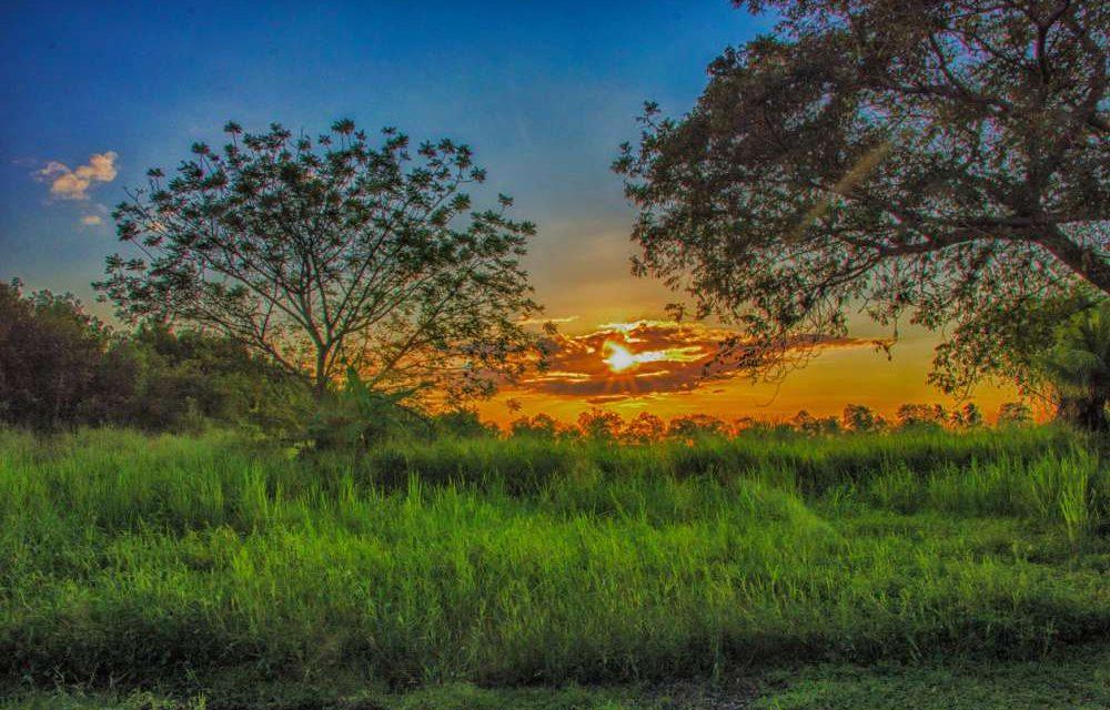 KLM retourtickets Suriname | Veel vertrekdata €730,- per persoon
