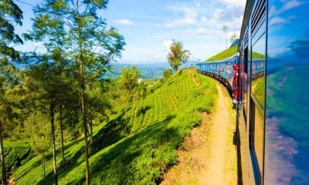 22-daagse rondreis Sri Lanka | incl. halfpension voor €1289,- p.p.