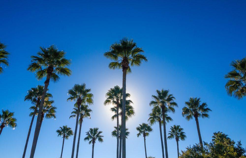 Zo cheap: 9 dagen Florida €398,- | Incl. luxe 4* villa met privé zwembad