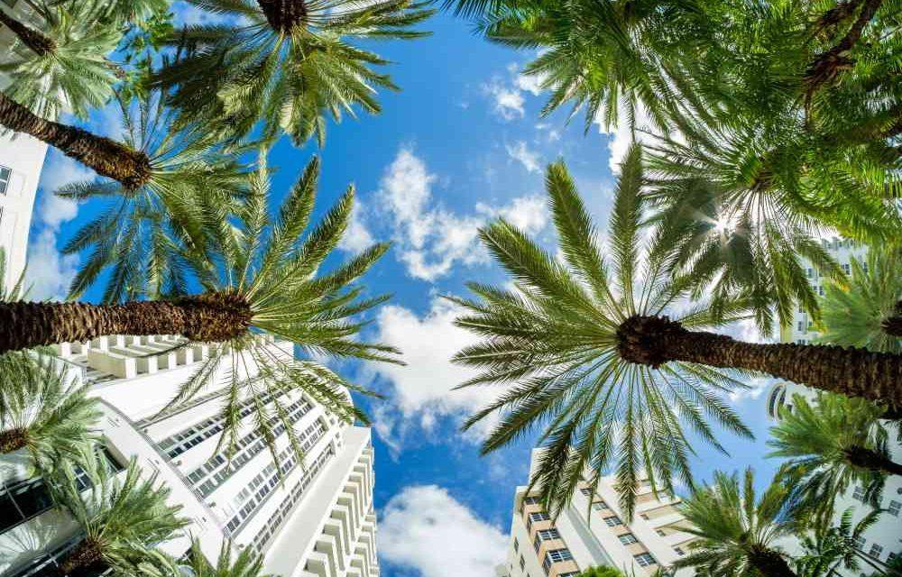 12 dagen naar Florida | Vluchten + villa met privé zwembad €476,-