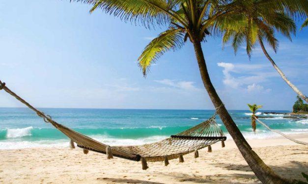 16-daagse vakantie Gambia €494,- p.p. | super last minute deal