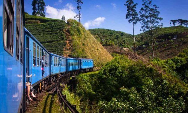17-daagse rondreis @ Sri Lanka | incl. halfpension voor €1089,- p.p.