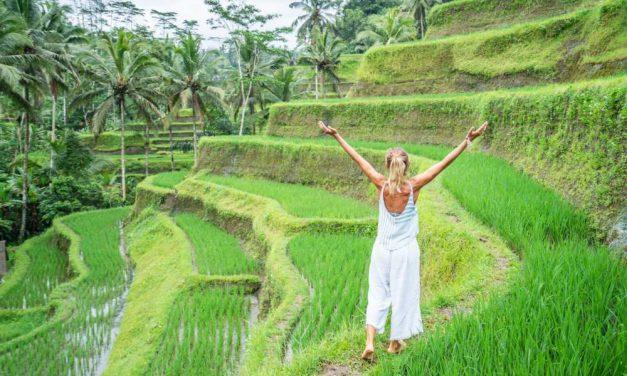 Bizar! 22-daagse vakantie Bali €592,-   KLM vlucht, ontbijt & meer