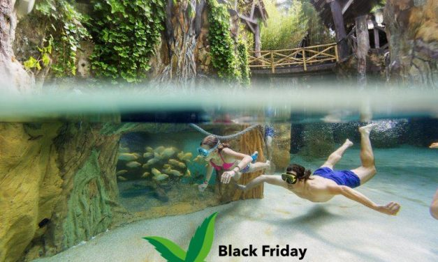Center Parcs Black Friday 2020 | Weekend weg v/a €64,- per huisje!