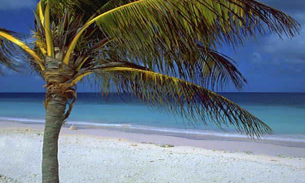 Must visit: Caribisch Bonaire | 9 dagen incl. 4**** verblijf €650,- p.p.