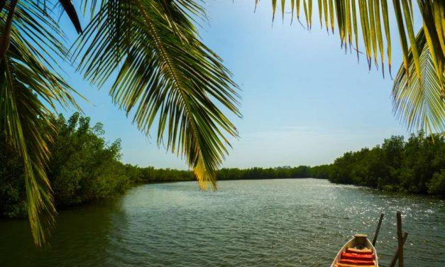 Zonvakantie naar Gambia in november 2020 | Incl. ontbijt €504,-