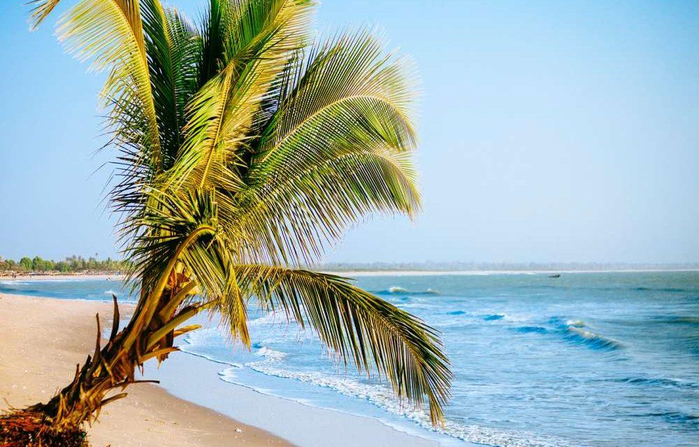 Let's go to Gambia! | Vroegboekkorting 2020 nu voor €571,-