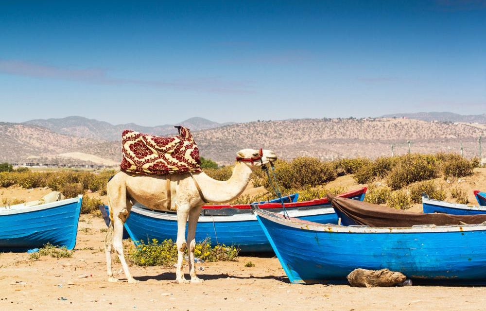 8-daagse zonvakantie Marokko | vlucht + 4* hotel in Agadir €146,- p.p.