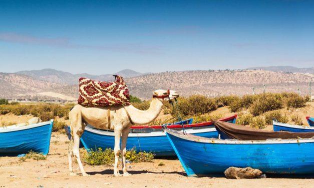 4**** zonvakantie @ Marokko | 8-daagse reis o.b.v. all inclusive €214,-