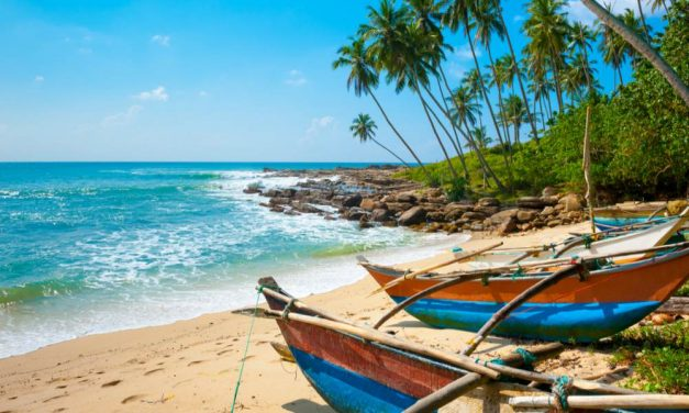 MUST VISIT: 't prachtige Sri Lanka | 13 dagen in augustus 2019