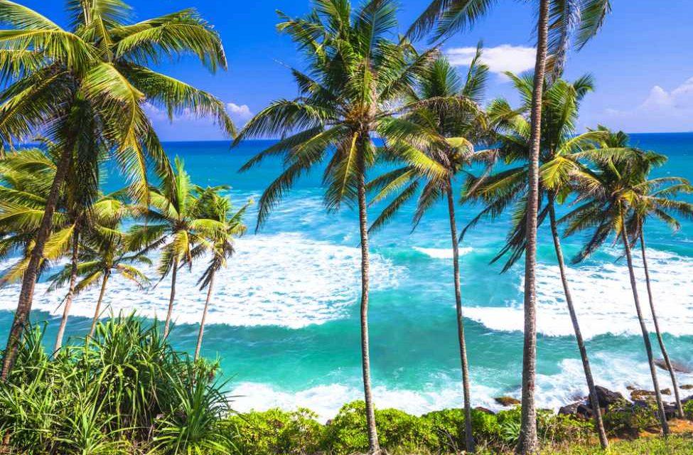 Genieten op tropisch Sri Lanka | 9 dagen incl. halfpension €612,-