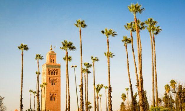 8 dagen magisch Marokko   Vertrek in augustus + ontbijt €352,-