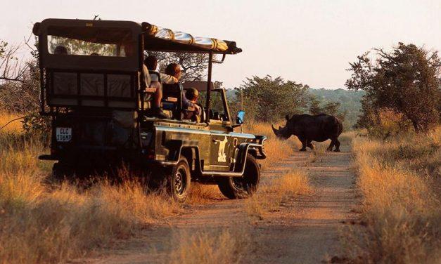 Rondreis Kleurrijk Zuid-Afrika | 15 dagen incl. ontbijt & VEEL! €1377,-