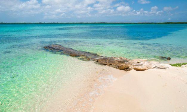 Let's go to Bonaire | 9-daagse last minute vakantie voor €550,-