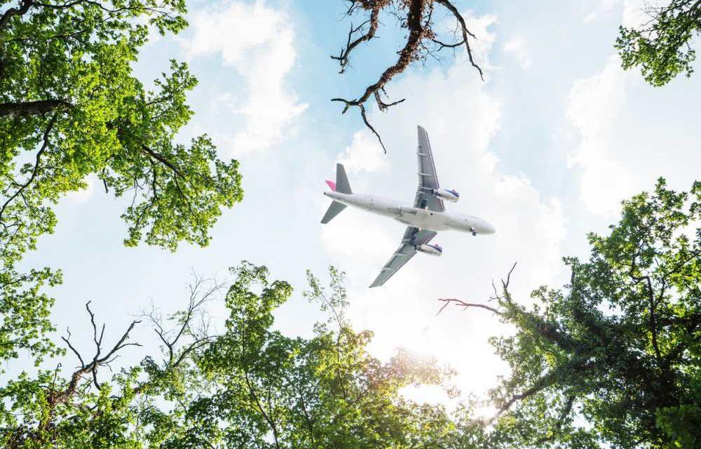 Bewuster reizen? Lees hier handige tips om CO2-uitstoot te compenseren!