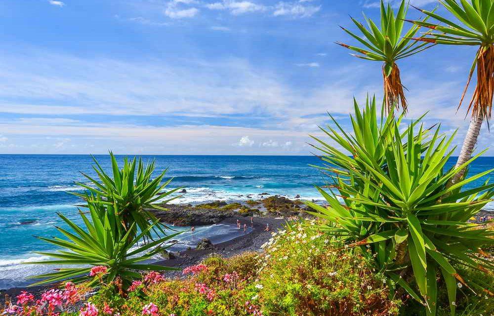 Vier nu de zomervakantie op Tenerife | 8 dagen voor €271,-