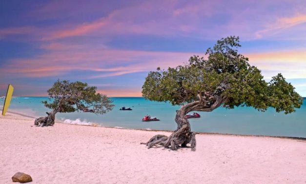 9-daagse vakantie @ Aruba | maart 2019 voor €650,- per persoon